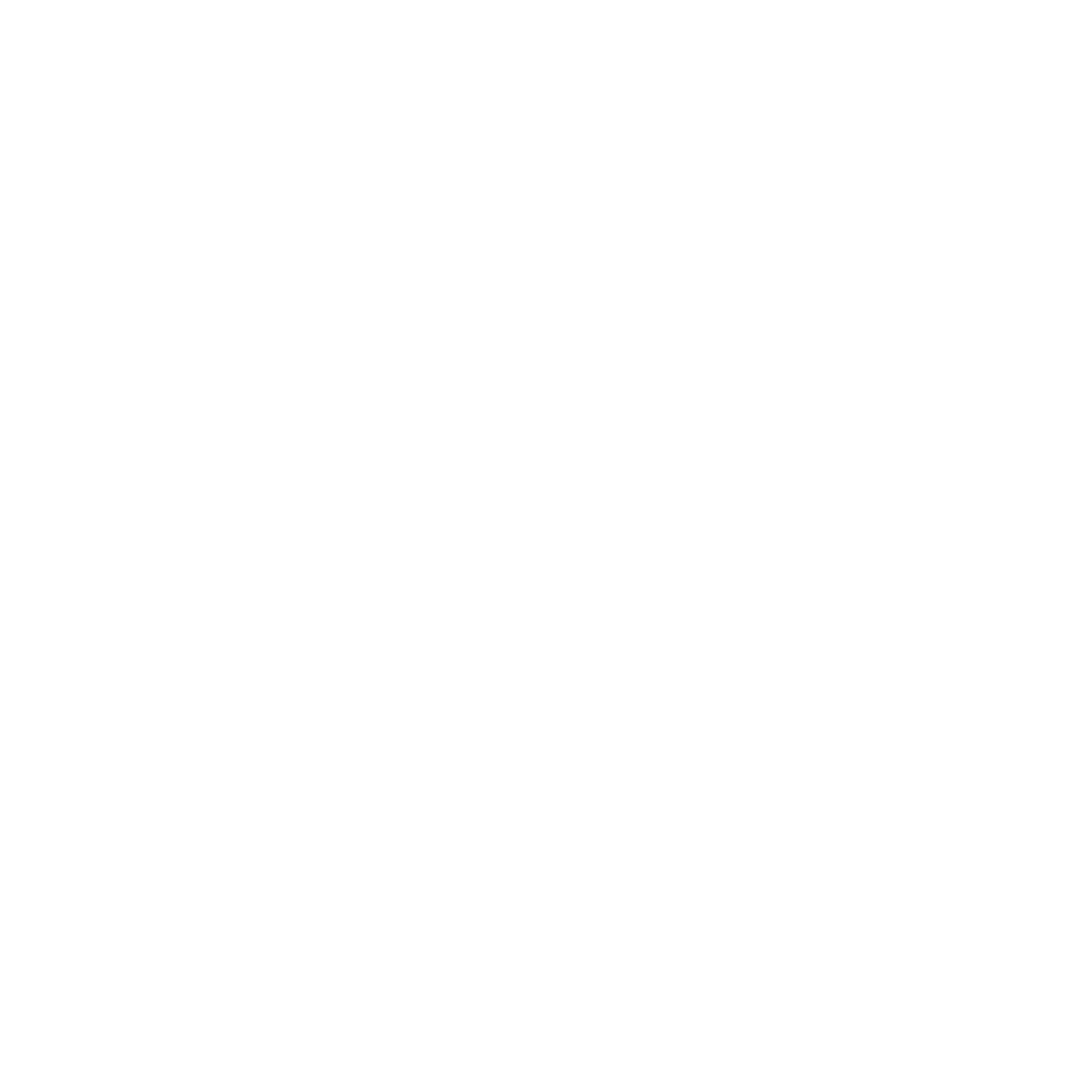 Carrier-Connection-Icon