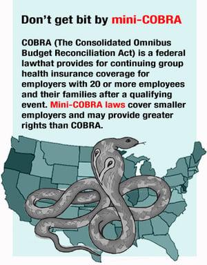mini cobra laws
